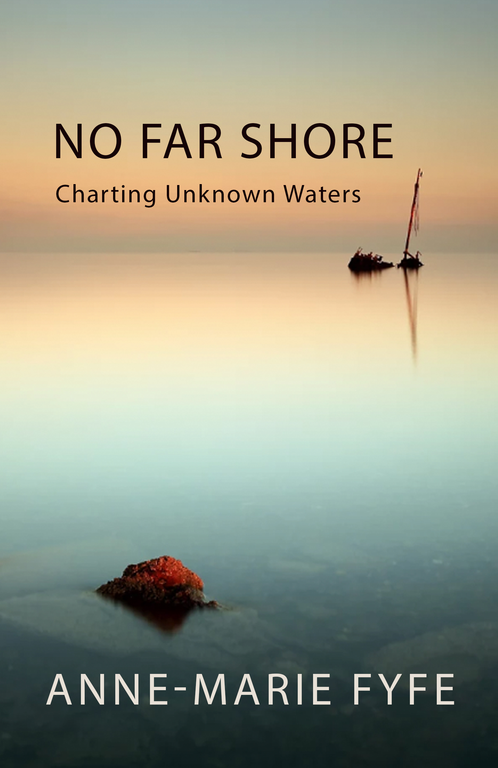 front cover of No Far Shore